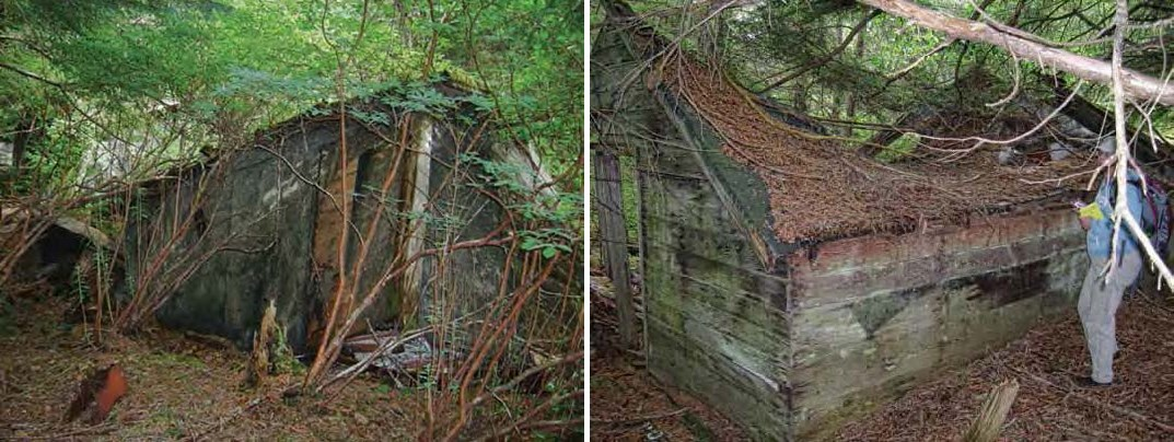 Two views of a collapsing cabin in the forest