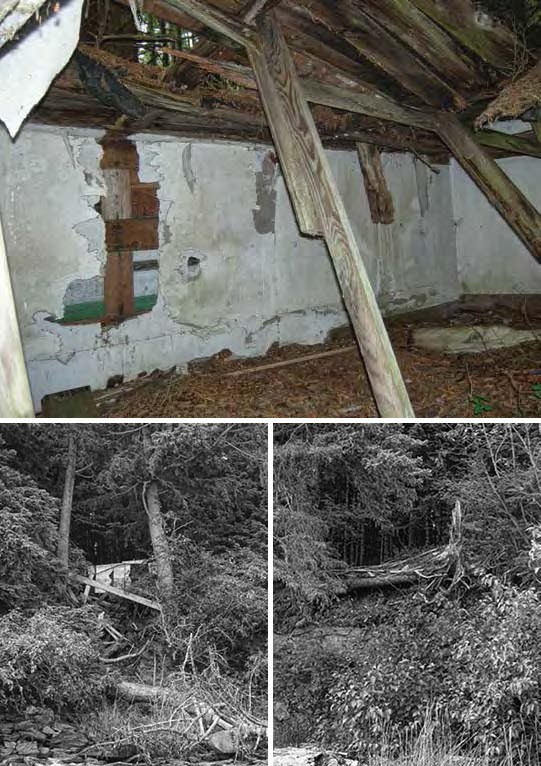 Composite of three images. Top: interior collapsed cabin. Bottom: two views of collapsed structures in the forest