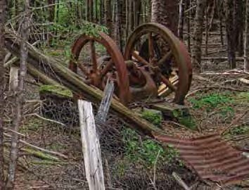 Rusted wheels and other metal in a forested area