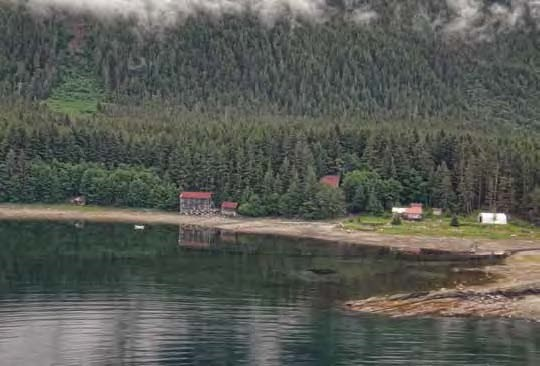 Color photo of buildings along a shore with forest backdrop