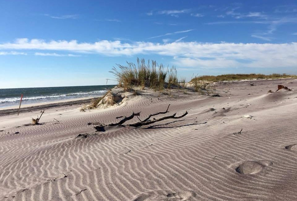 sandy beach with rippled pattern and dune grasses