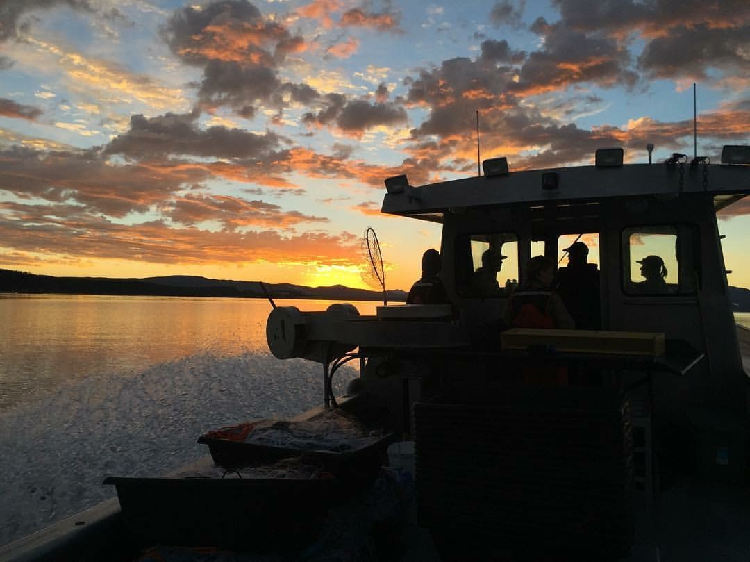 Fisheries boats on Yellowstone Lake at sunset