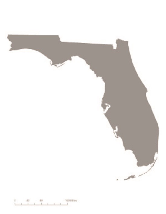 Picture of state of Florida in gray – indicating it was not one of the original 36 states to ratify the 19th Amendment. CC0