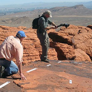paleontologists at trackway