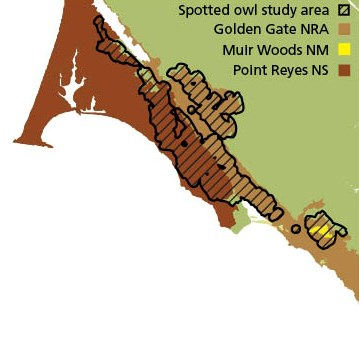 Map showing that spotted owl monitoring occurs in segments of the GGNRA, Muir Woods NM, and Point Reyes NS.