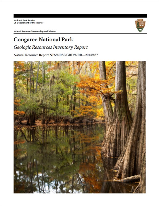 congaree report cover with wetlands image