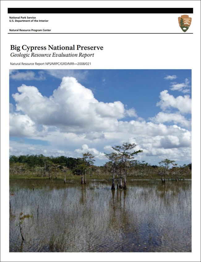big cypress report cover with landscape image