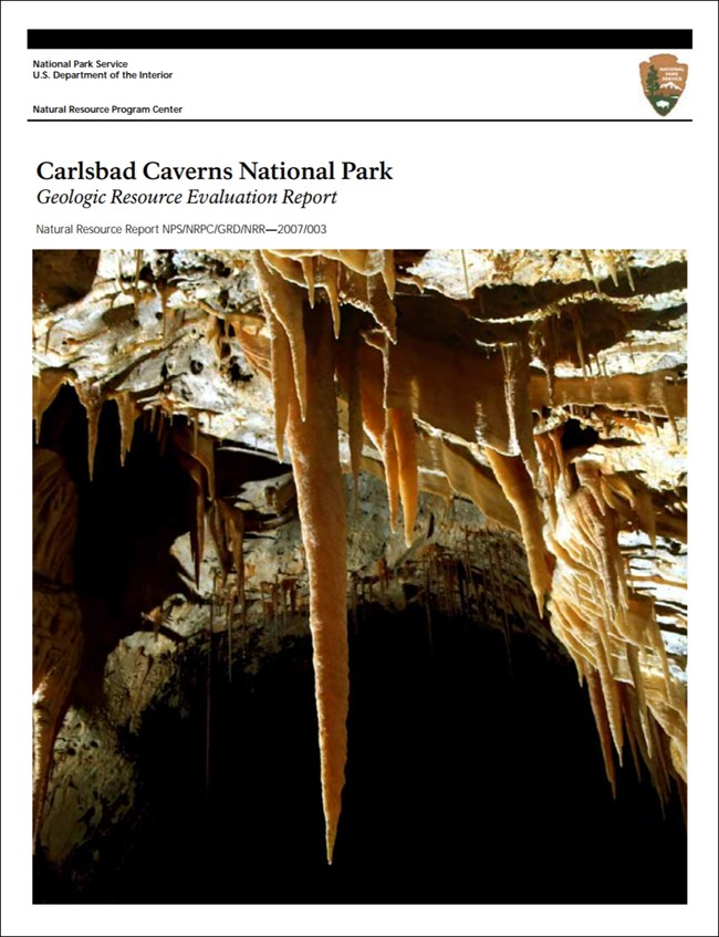 carlsbad caverns report cover with cave formation image