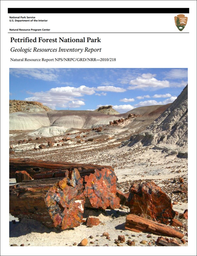 image of petrified forest report cover with petrified logs on desert landscape