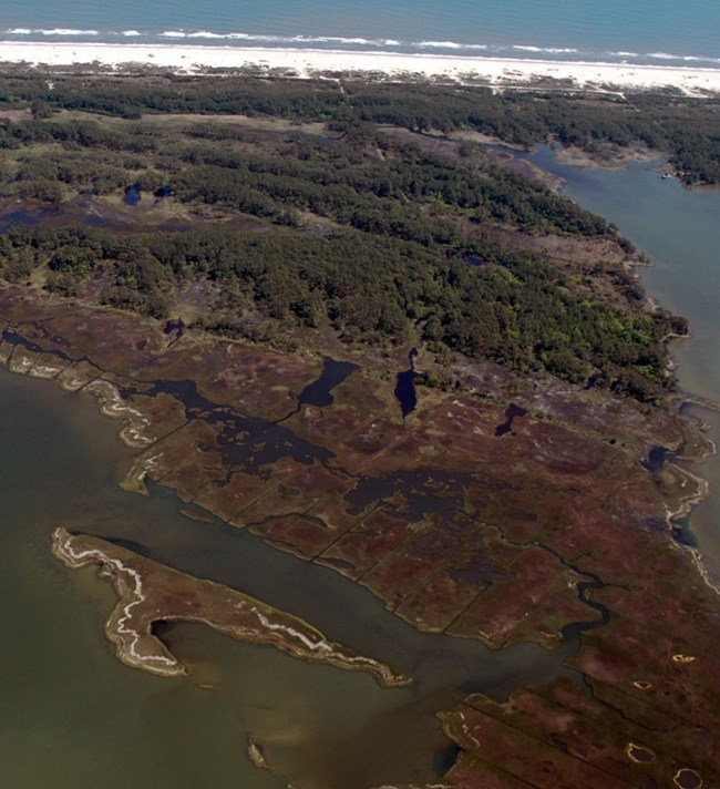 coast, dunes, and salt marsh