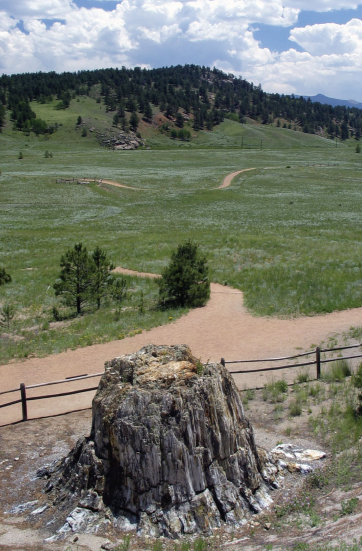 Florissant Fossil Beds National Monument | OutThere Colorado
