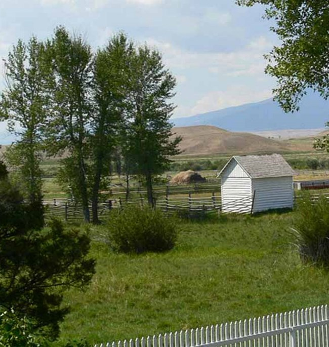 ranch view with fence and shed