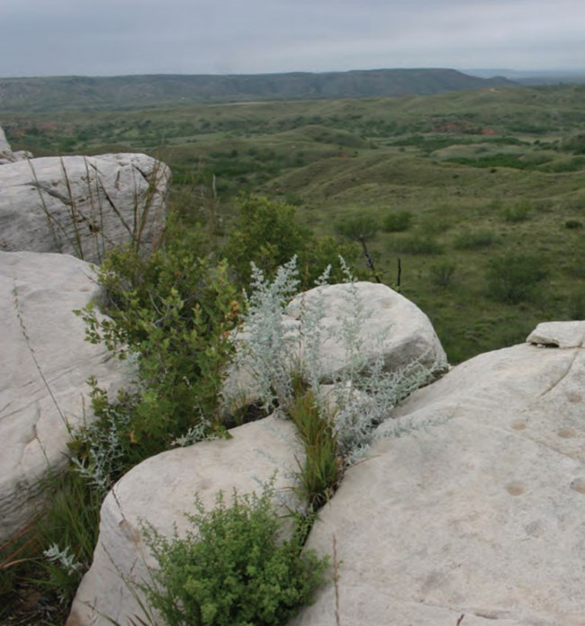 rock outcrop overlooking park landscape