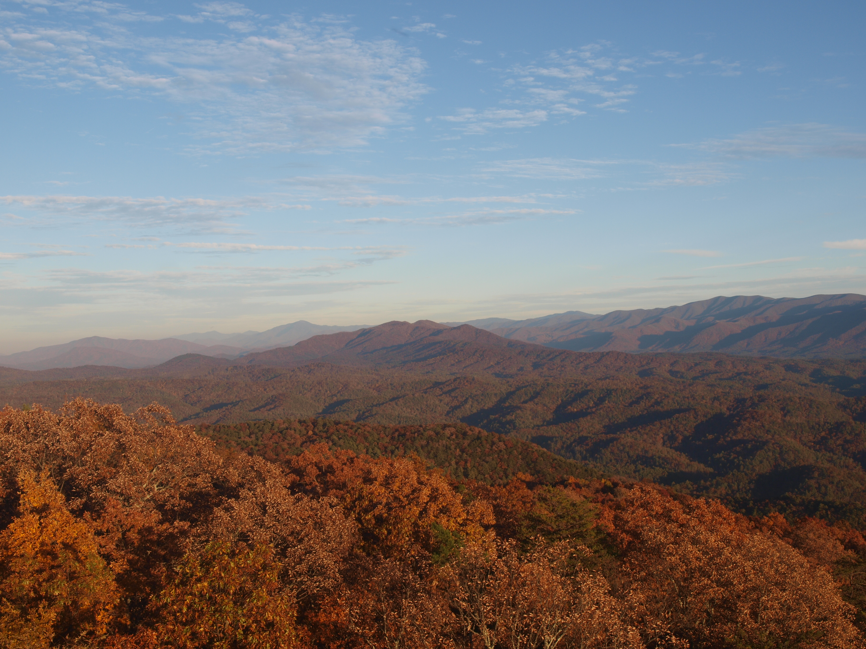 Scenic view in Great Smoky Mountains NP