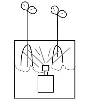 drawing of aeroponics method