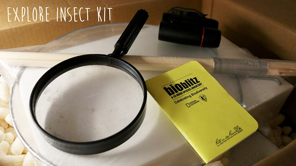 magnifying glass, notebook, and binoculars with the word explore insect kit written atop the photo