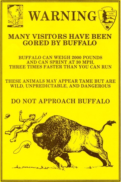 Flyer stating WARNING and showing a cartoon drawing of a person being thrown up in the air by a bison goring it