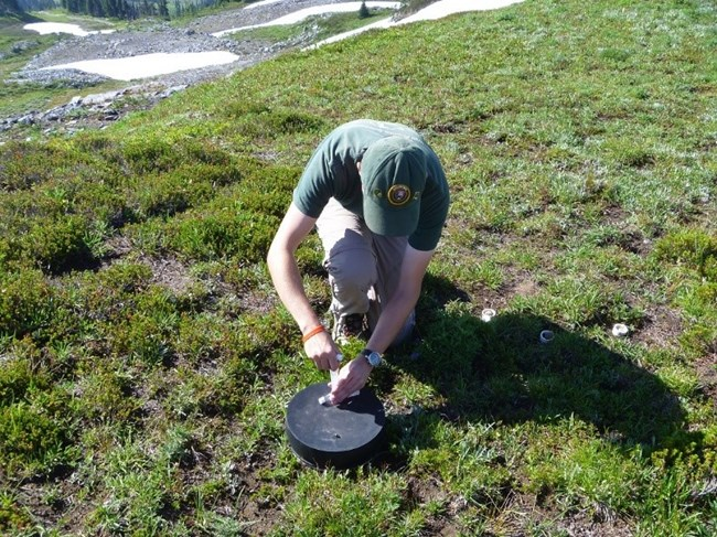 Dr. Poinsattee sampling gaseous emissions in an alpine meadow.