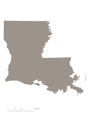 State of Louisiana shaded gray