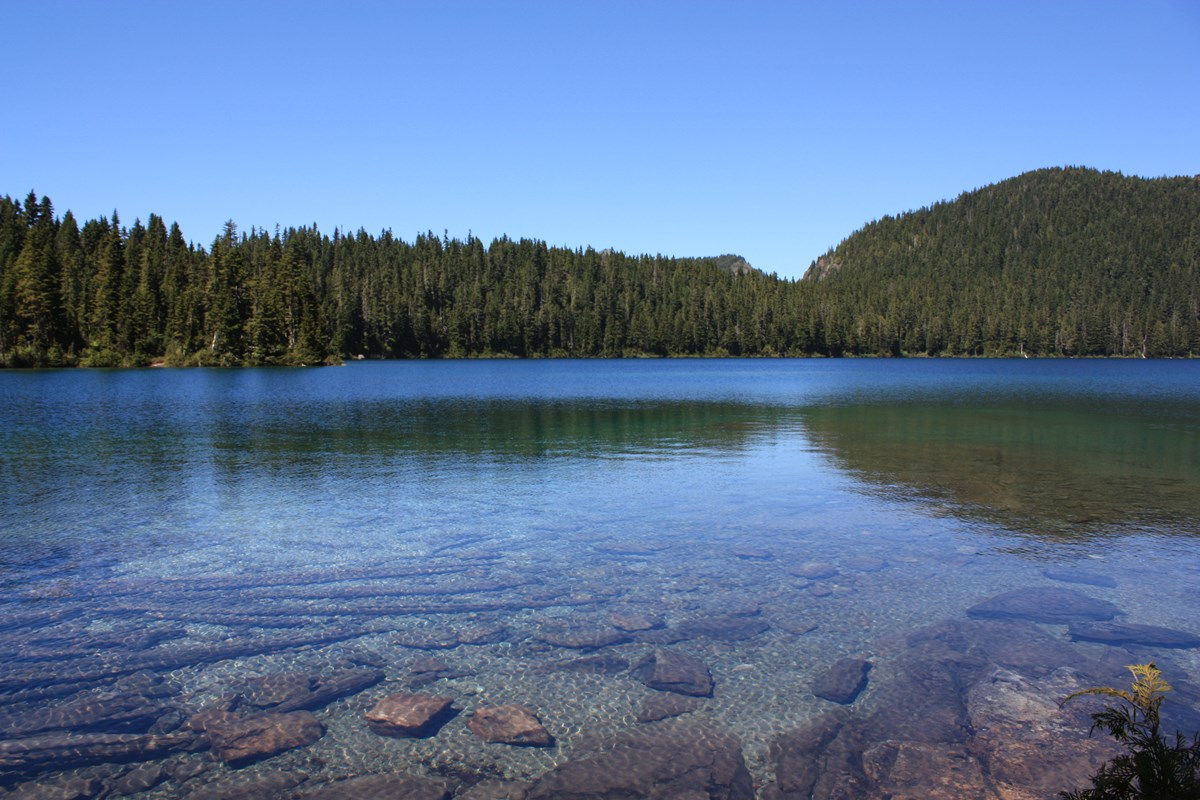 Clear, blue water of Mowich Lake surrounded by forested ridge.