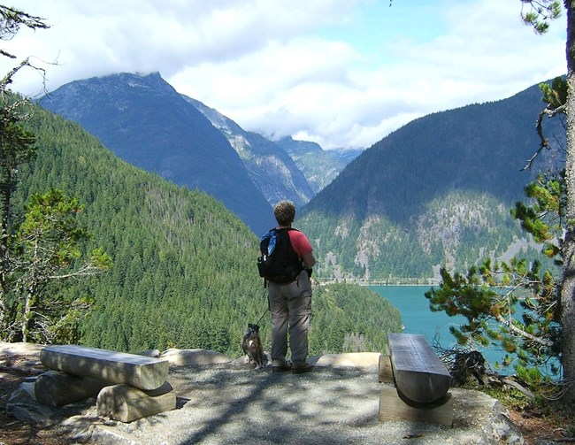 Park visitor and dog in Ross Lake Recreation Area