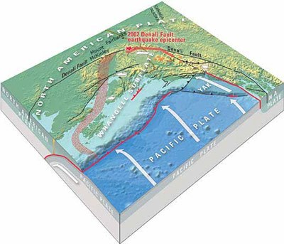 tectonic plate graphic of the coast of alaska illustrating how the pacific plate pushes under the north american plate