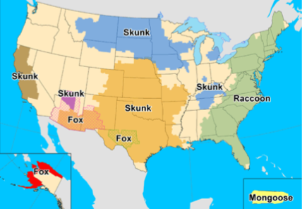 Map showing species likely to have rabies in the United States
