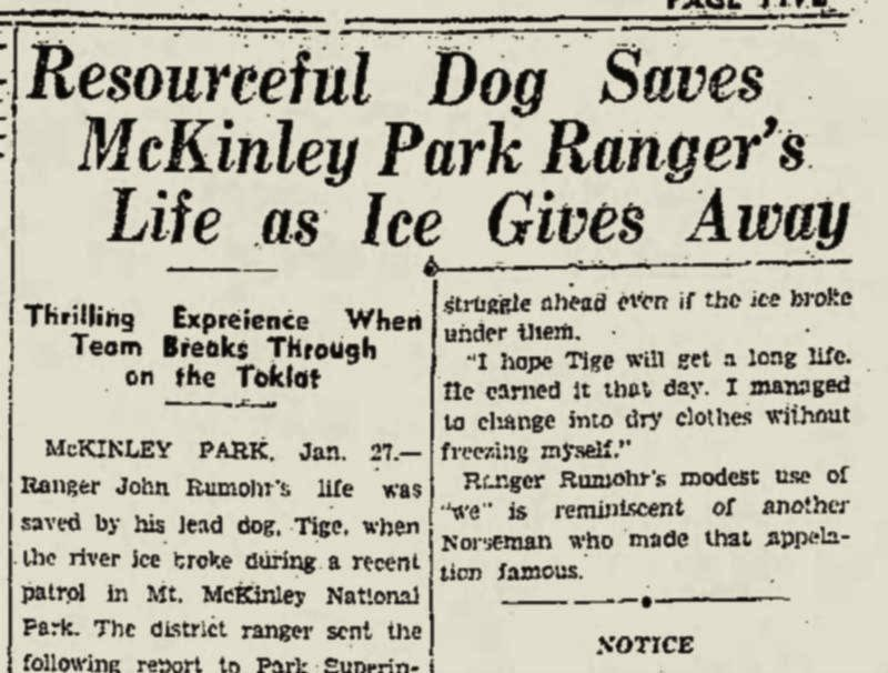 "newspaper headline reading, ""resourceful dog saves mckinley park ranger's life as ice gives away"""