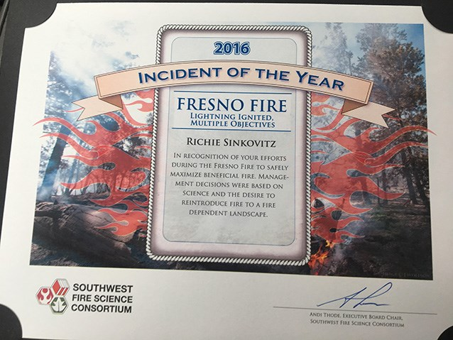 Incident of the Year 2016 Award Certificate