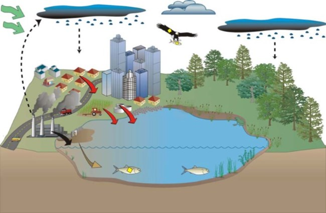 Conceptual diagram illustrating how various factors can contribute to water contamination