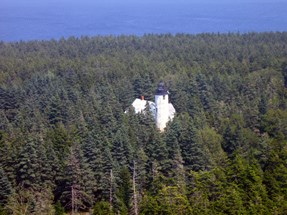 Aerial view of lighthouse surrounded by coniferous trees.