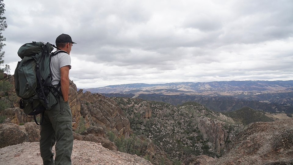 Biologist Gavin Emmons surveys the landscape of Pinnacles National Park.