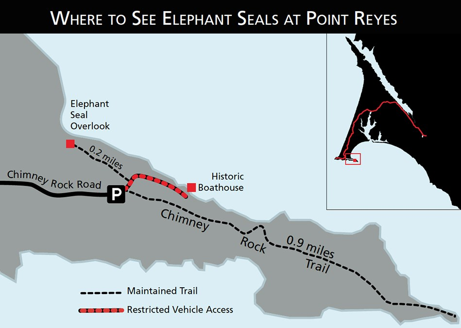 Map showing where to see elephant seals at Point Reyes: Chimney Rock, Elephant Seal Overlook.