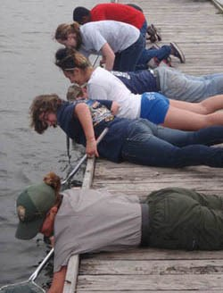 Students dipnetting in bay