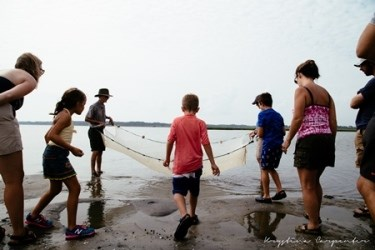 Exploring Toms Cove with seine nets