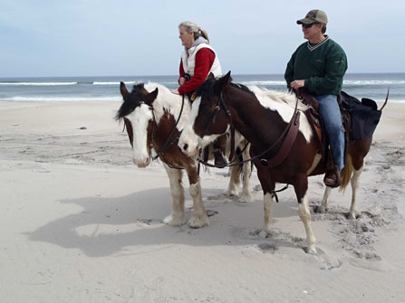 2 visitors riding horses on the beach in the Maryland district. 57kb