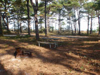 Tingles Island Backcountry Bayside Campsite with picnic table and fire ring, 46kb.
