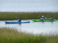 Explore Assateague on a ranger guided kayak program!