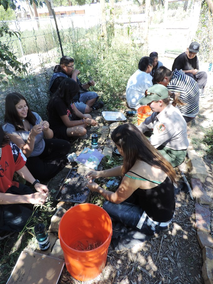 Working in the Heritage Garden During a Service-Learning Field Trip