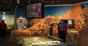 Visitors viewing exhibits in the Ben Reifel Visitor Center