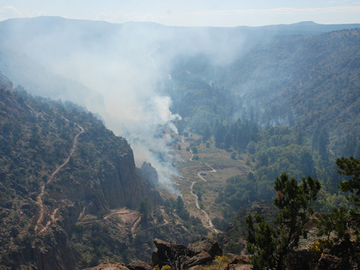 prescribed burn in Frijoles Canyon