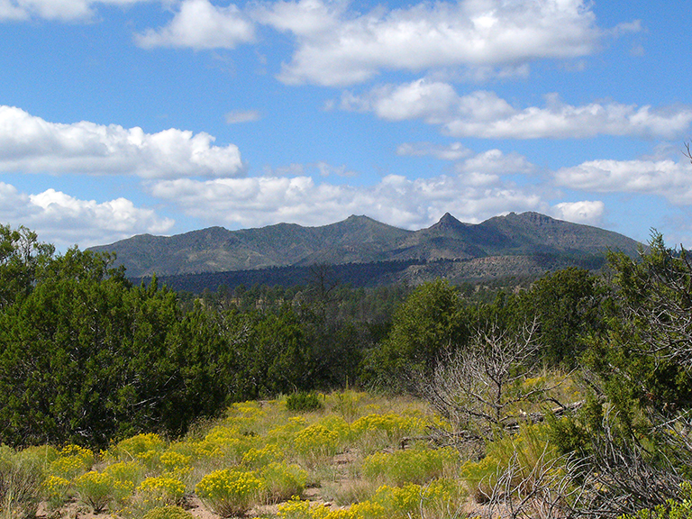 View from Frijolito Loop Trail