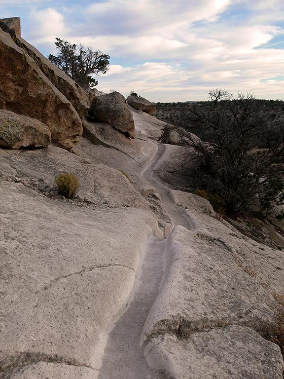 The Ancestral Trail Pdf