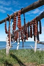 Strips of red salmon hang from a wooden rack on a grassy shore, with blue sky and water in the background