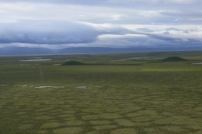 An aerial view of the green tundra under cloudy skies, with polygon patterns on the ground and two pingos in the distance