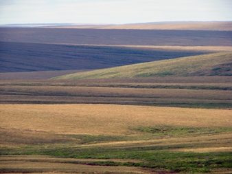 Tundra - Bering Land Bridge National Preserve (U.S. National Park ...