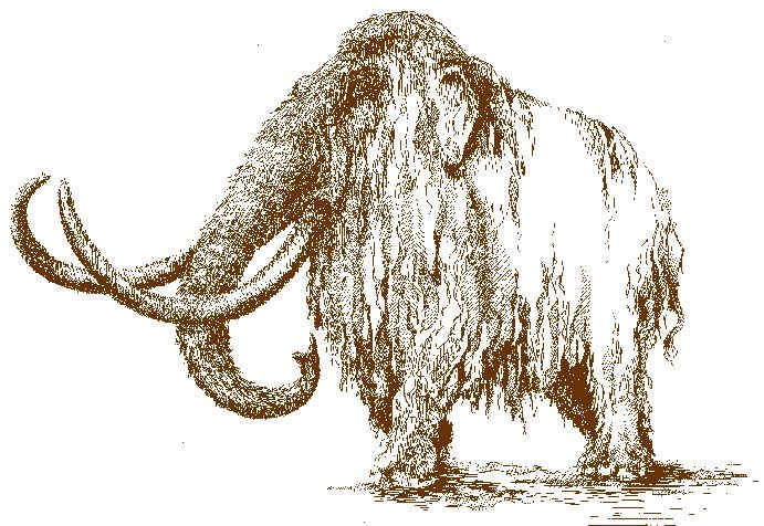 A brown line drawing of a woolly mammoth
