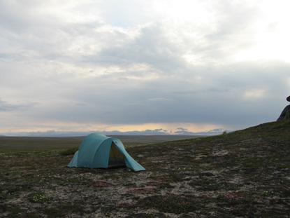 Blue tent set up at a tundra campsite at Serpentine Hot Springs on an overcast day.