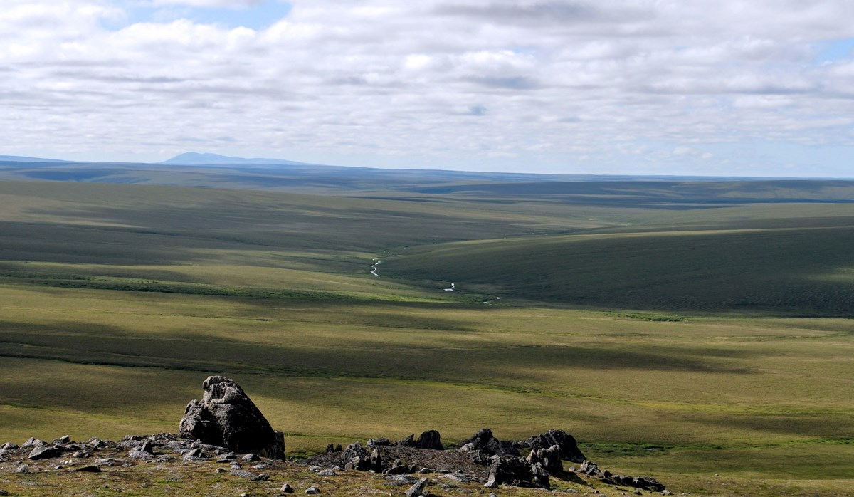 Tors rising from the ground before a vast expanse of green tundra.