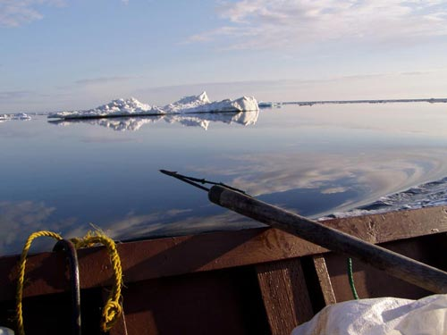 A seal-hunting harpoon rests on the edge of a wooden boat, with glassy water and sea ice in the background